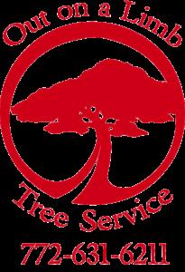 Tree Service Stuart